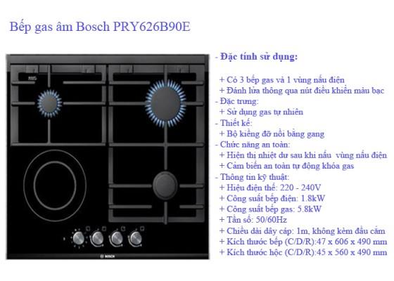 bep-gas-am-bosch1